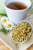 Remedio hecho en casa - chamomilla herbario del matricaria del té de manzanilla - fotos de archivo