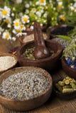 Remedio, mortero e hierbas naturales Fotografía de archivo libre de regalías
