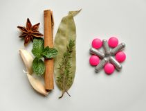 Remedio natural contra píldoras modernas fotografía de archivo libre de regalías