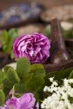 Remedio natural, medicina herbaria y fondo de madera de la tabla Imagen de archivo