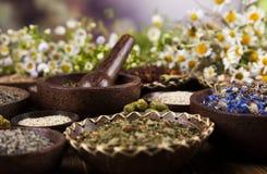 Remedio natural, medicina herbaria y fondo de madera de la tabla Fotos de archivo