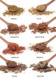 Remedios herbarios naturales Imagenes de archivo