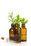 Remedios naturales Foto de archivo libre de regalías