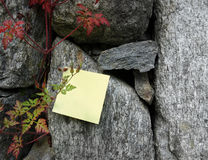 Remember: Post-it note. Remember: Write note on nature Royalty Free Stock Images