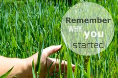 Remember why you started motivating quote royalty free stock image