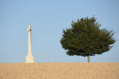 Remembering the dead from the world war. Typical scenery around Ypres/Poperinge where in the wheat fields you find graveyards remembering the fallen during the Royalty Free Stock Photo