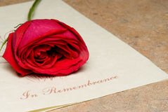In Remembrance. A funeral bulletin with a single red rose Stock Photography