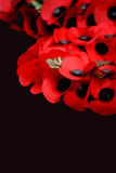 Remembrance. Abstract creative Remembrance Day scene Stock Photography