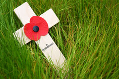 Remembrance cross. With a poppy on grass Stock Photo