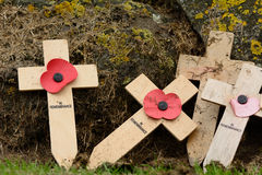 Remembrance day crosses with poppies Royalty Free Stock Photos