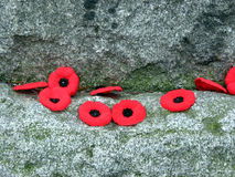 Remembrance day 1. Poppies on the granite war monument on Remembrance day Royalty Free Stock Images