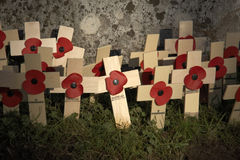 Free Remembrance Day Stock Image - 3899991