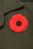 Remembrance Day. Poppy pinned to wool jacket to commemorate Remembrance Day / World War 1 (Canada Stock Photography