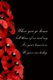 Remembrance Day Royalty Free Stock Photo
