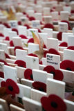 Remembrance Day: For All Stock Image