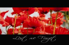 Remembrance day background royalty free stock photography