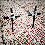 Remembrance Day: British Legion tribute Stock Photos