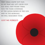 Remembrance Day Stock Photos
