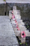Remembrance Day Crosses Stock Images