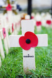 Remembrance day display in Westminster Abbey Stock Images