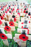 Remembrance day display in Westminster Abbey Stock Photos
