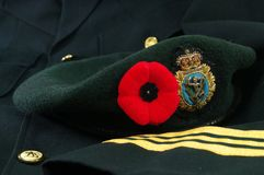 Remembrance Day in Greens Stock Photography