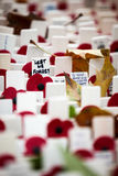 Remembrance Day: Lest We Forget Royalty Free Stock Photography