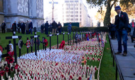 Remembrance day in London. Remembrance day celebration in London. Royal British Legion's Field of Remembrance opened at Westminster Abbey Stock Photo