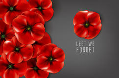 Remembrance day - 11 november - lest we forget Stock Images