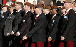 Remembrance Day Parade, 2012 Royalty Free Stock Image