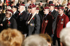 Remembrance Day Parade Royalty Free Stock Images