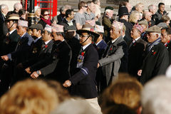 Remembrance Day Parade Stock Images