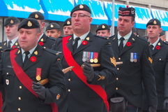 Remembrance Day Parade Stock Image