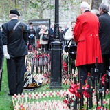 Remembrance Day: Paying Respect Royalty Free Stock Images