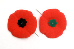 Remembrance Day Poppies - Old (green) and New (Bla Royalty Free Stock Photos