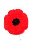 Remembrance Day Poppy. Poppy to commemorate Remembrance Day / World War I (Canada Stock Images