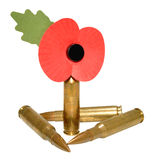Remembrance Day Poppy And Bullets Stock Photo