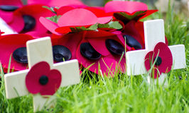 A remembrance day poppy. On a cross Stock Photos