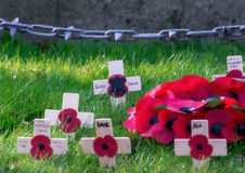 For remembrance Royalty Free Stock Photos
