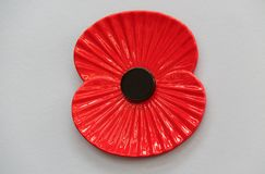 Remembrance Day Poppy. stock photography