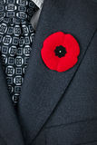 Remembrance Day poppy on suit. Red poppy lapel pin on suit jacket for Remembrance Day Royalty Free Stock Images