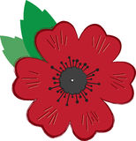 Remembrance Day Poppy Stock Image