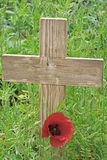 Remembrance day a poppy and a wooden cross Royalty Free Stock Images