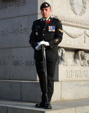 Remembrance Day soldier in front of war memorial Stock Images