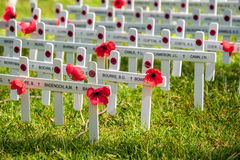 Remembrance Day traditional ceremony Stock Photo