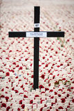 Remembrance Day: Unknown Soldier Royalty Free Stock Photos