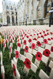 Remembrance Day: We Will Never Forget Royalty Free Stock Photography