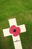 Poppy Cross Stock Image
