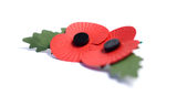 Remembrance Poppies. Two remembrance poppies with selective focus and copy space Royalty Free Stock Images