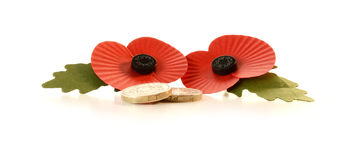 Remembrance Poppies & pound coins. Studio macro of two remembrance poppies with pound coins against a white background. Copy space royalty free stock images